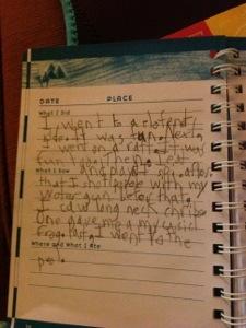 Lucas's diary