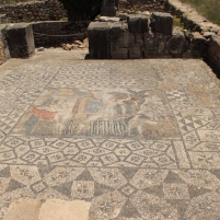 another mosaic, extremely well preserved
